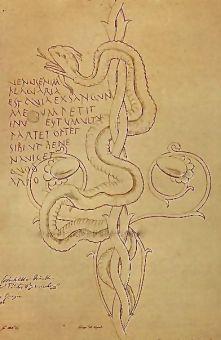 Venus graffito